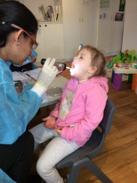 OHEL dental 2